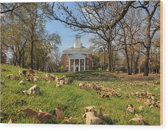 Wood Print featuring the photograph Middle College On An Autumn Day by Viviana  Nadowski