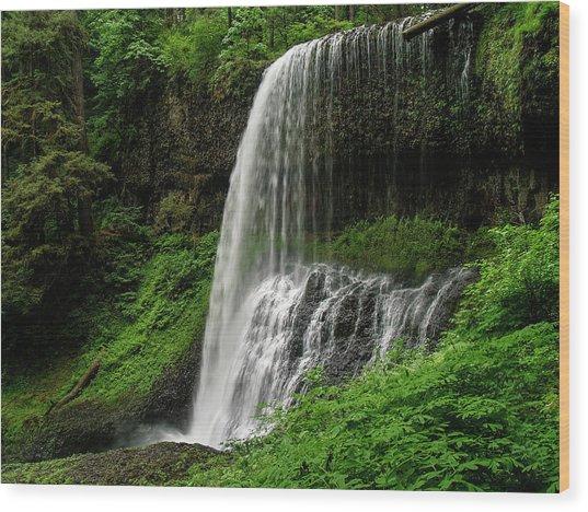 Middle Falls Wood Print