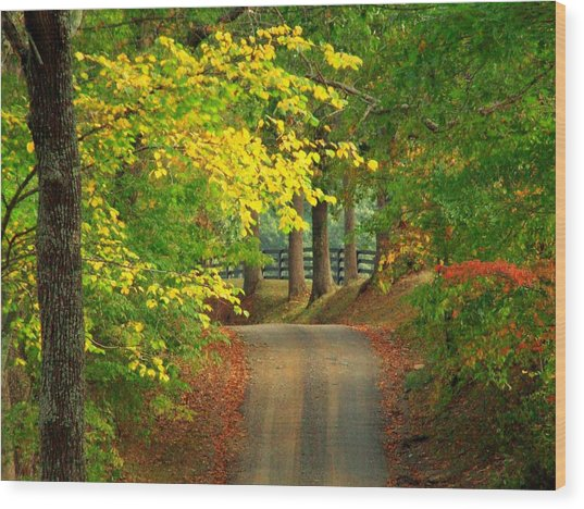 Middleburg Road Wood Print