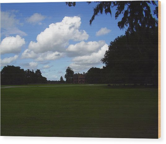Middleton Place Wood Print