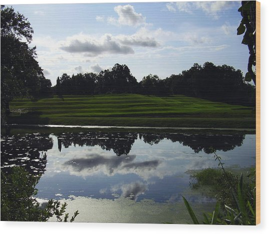 Middleton Place II Wood Print
