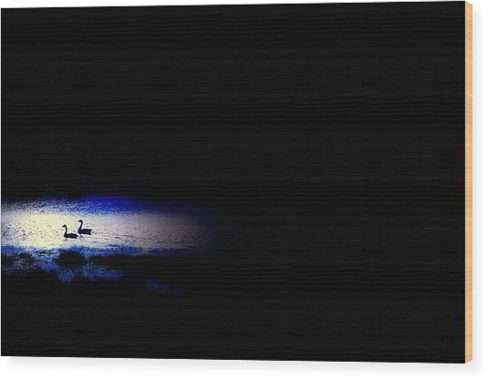 Midnight Float Wood Print