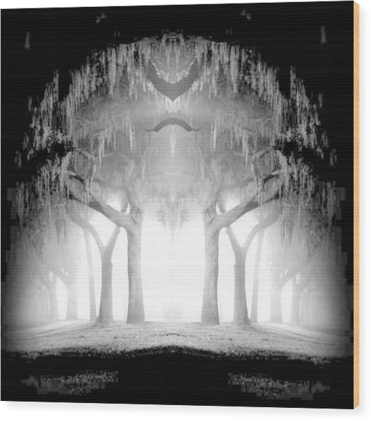 Midnight In My Mind Wood Print