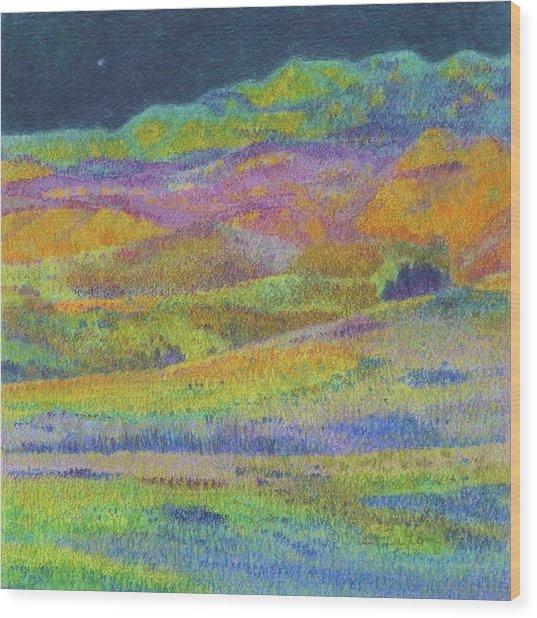 Midnight Magic Dream Wood Print