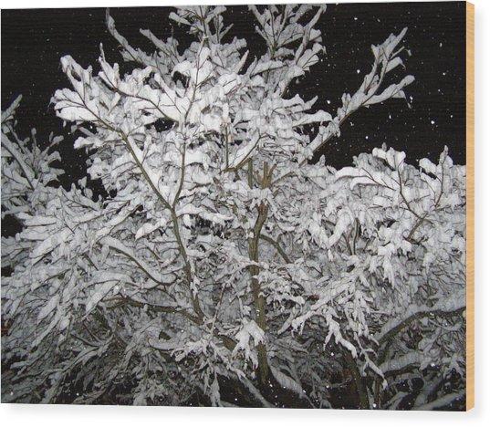 Midnight Snow 3 Wood Print by Christine Sullivan Cuozzo
