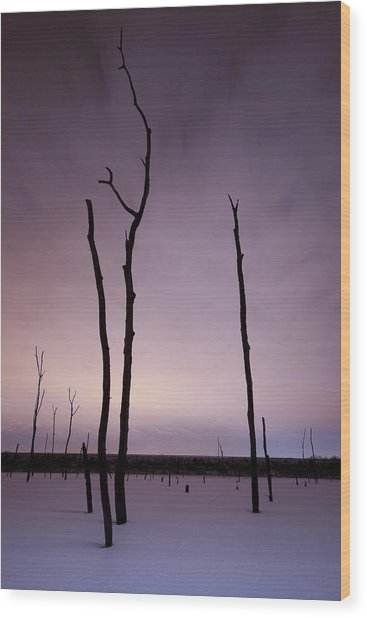 Midnight Souls Wood Print by Ryan Heffron