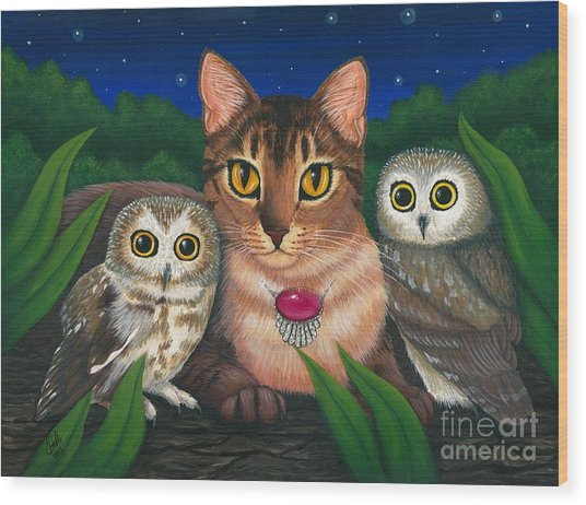Midnight Watching - Abyssinian Cat Saw Whet Owls Wood Print