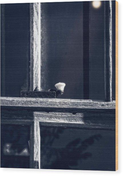 Midnight Window Wood Print