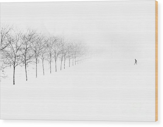 Midway Plaisance Wood Print by Jim Wright