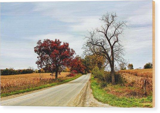 Midwest Autumn  Wood Print
