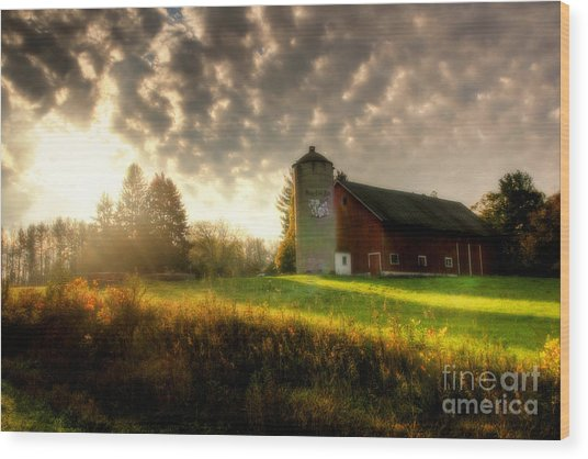Midwest Morning Wood Print