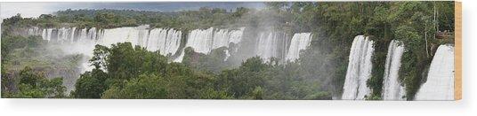 Mighty Iguazu Wood Print