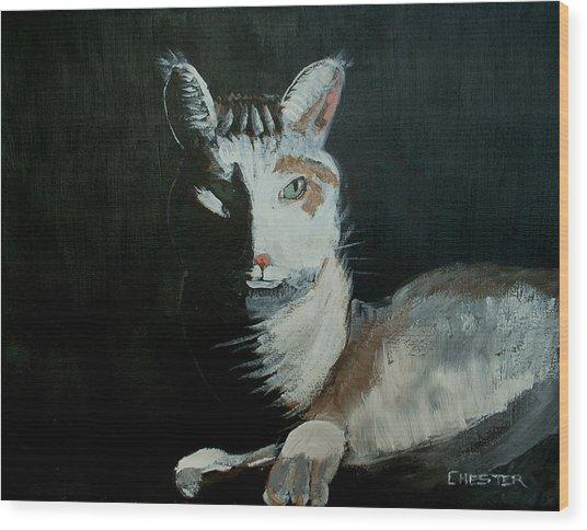 Milkshake The Cat Wood Print