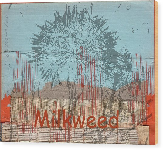 Milkweed Collage Wood Print