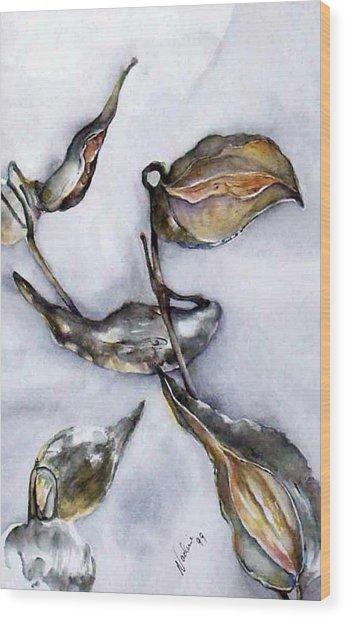 Milkweed In Winter Wood Print