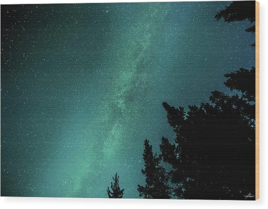 Milky Way Above The Trees Wood Print