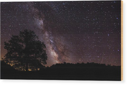 Milky Way And The Tree Wood Print