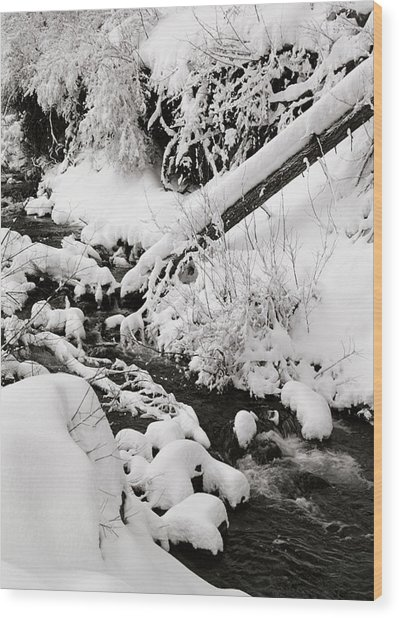 Mill Creek Canyon In Winter Wood Print by Dennis Hammer