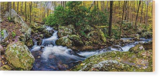 Mill Creek In Fall #4 Wood Print