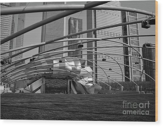 Millennium Park IIi Visit Www.angeliniphoto.com For More Wood Print