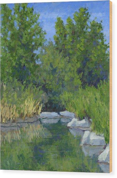 Millrace Pond Wood Print