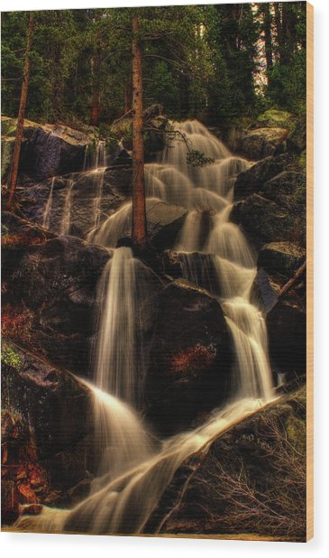 Quaking Aspen Falls Along Tioga Pass  Wood Print