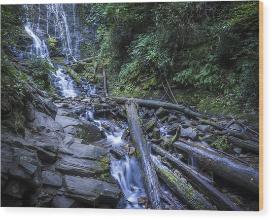 Mingo Falls One Wood Print