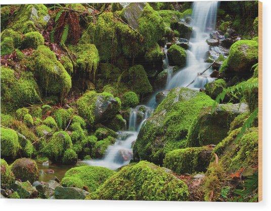 Mini Cascading Waters Wood Print