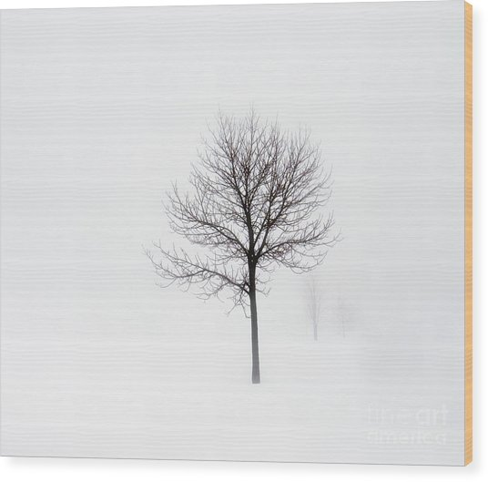 Minimum Visibility Wood Print