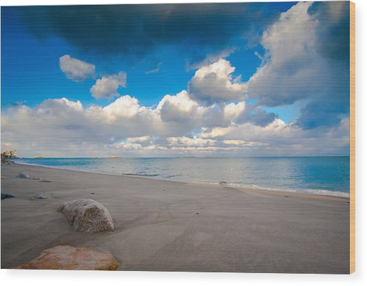Minot Beach In Scituate Massachusetts  Wood Print