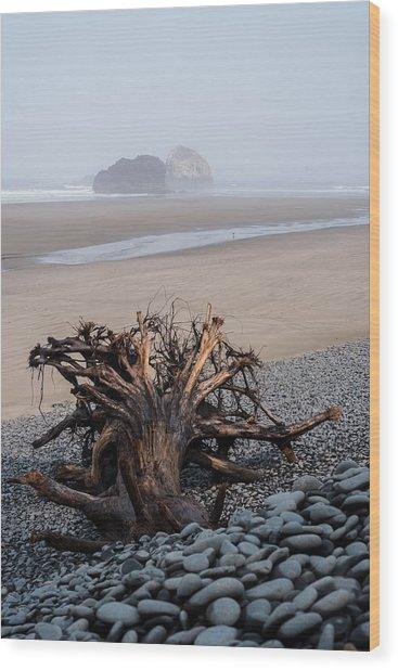 Minus Tide At Arch Cape Wood Print