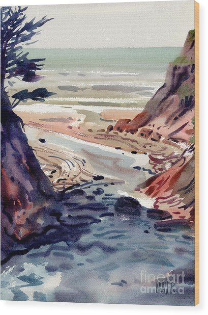 Miramonte Point Wood Print by Donald Maier