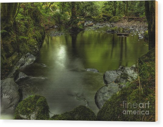 Mirror Pool Wood Print