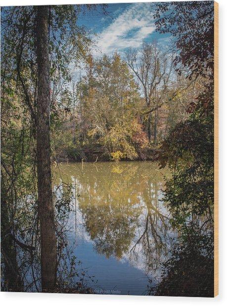 Mirror River Wood Print