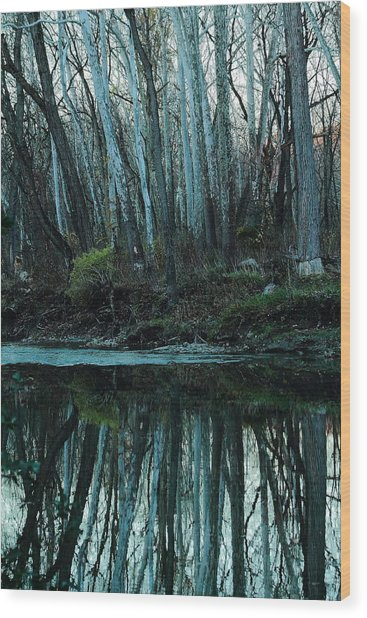 Mirrored Wood Print