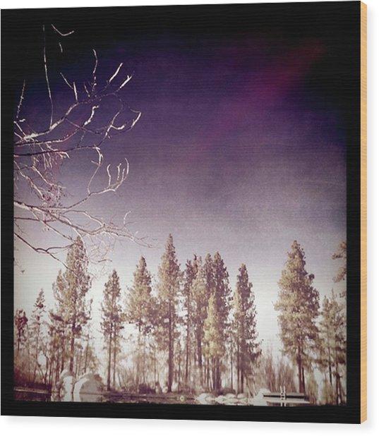 Mirrored On The Lake Wood Print