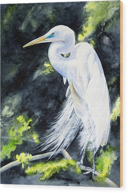 Miss April - Great Egret Wood Print
