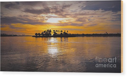 Mission Bay Purple Sunset By Jasna Gopic Wood Print