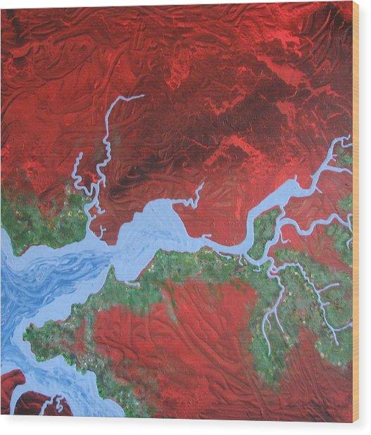 Mission River Wood Print