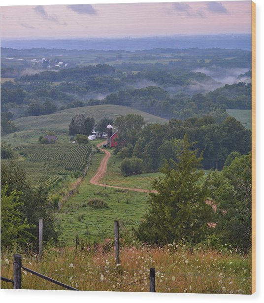 Mississippi River Valley 2 Wood Print