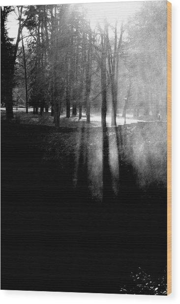 Mist An Black Wood Print