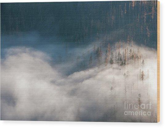 Mist And Shadow Wood Print