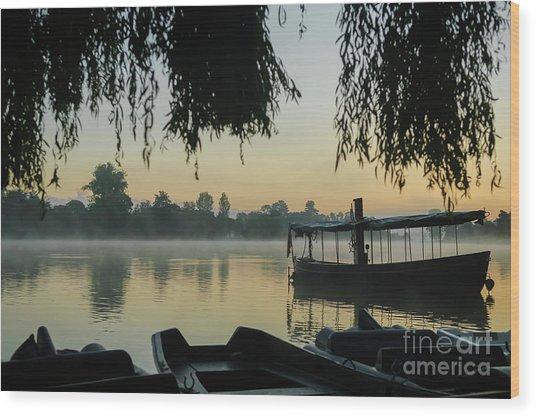 Mist Lake Silhouette Wood Print