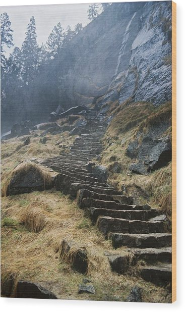 Mist Trail Wood Print by Richard Verkuyl