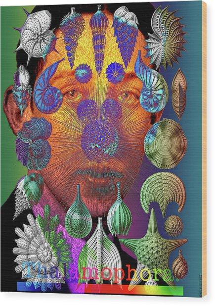 Mister Thalamophora Wood Print