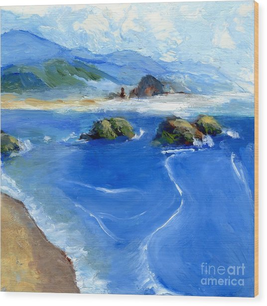 Misty Bodega Bay Wood Print