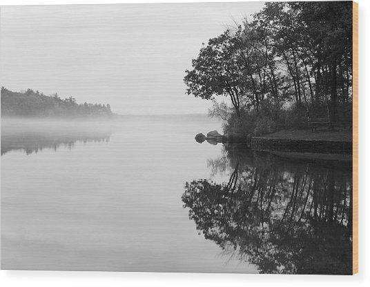 Misty Cove Wood Print