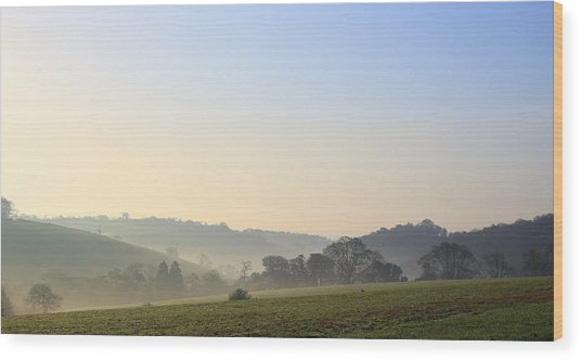 Misty Dawn Over The Cornish Countryside Wood Print