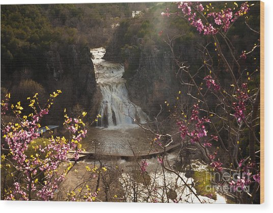 Misty Day In Turner Falls Wood Print