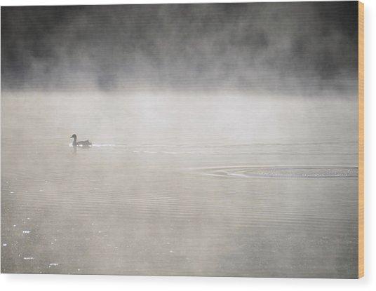 Misty Duck Wood Print